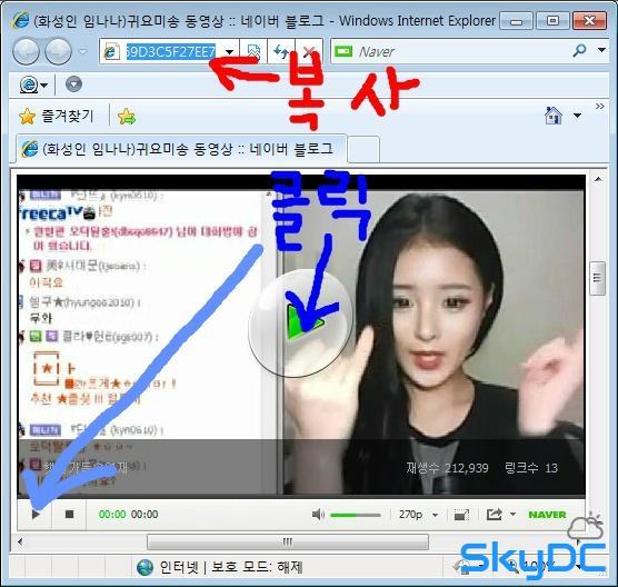 인터넷 동영상 추출 프로그램 - Freemake Video Downloader